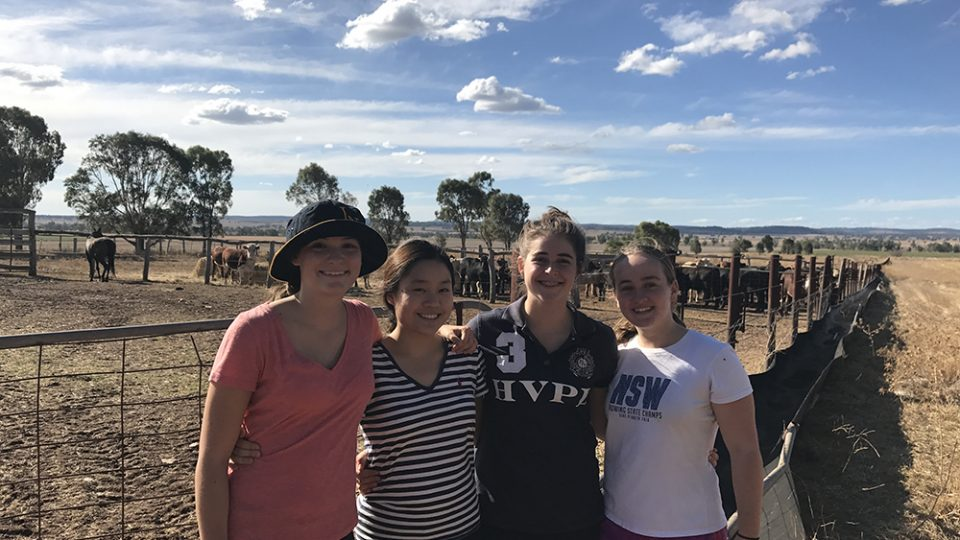 Loreto Rural Partnership 2017